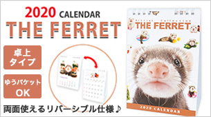 Artlist Collection THE FERRET 2020フェレットカレンダー(卓上)