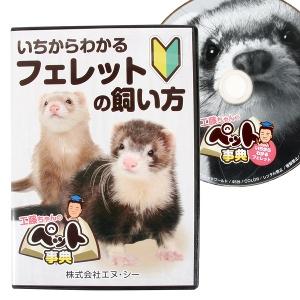 いちからわかる フェレットの飼い方 DVD