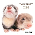 Artlist Collection THE FERRET 2021フェレットカレンダー