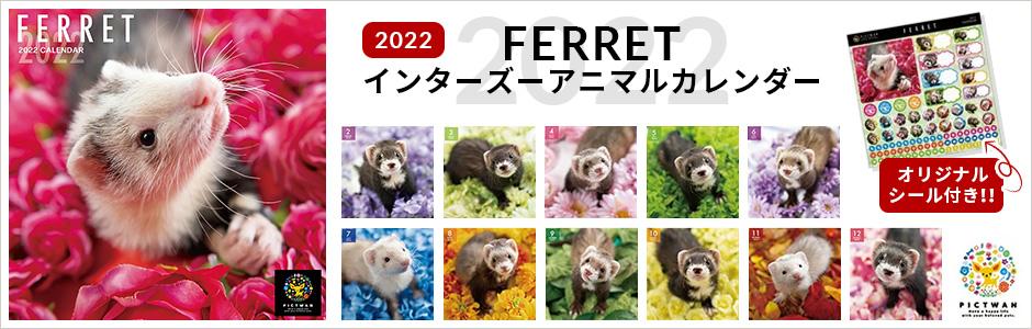 インターズー アニマルカレンダー フェレット 2022